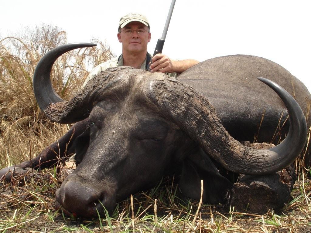 big-buffalo1
